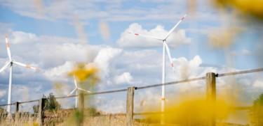 Dueselder Windpark Wendhausen